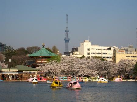 不忍池(ボート池)と弁天堂と東京カイツリー